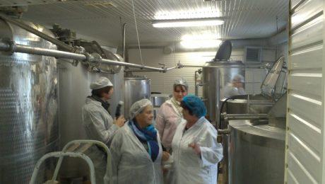 Jauna pieeja piena pārstrādei